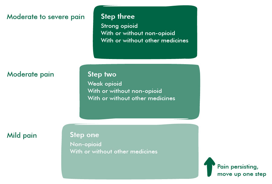 The analgesic ladder (levels of pain control)