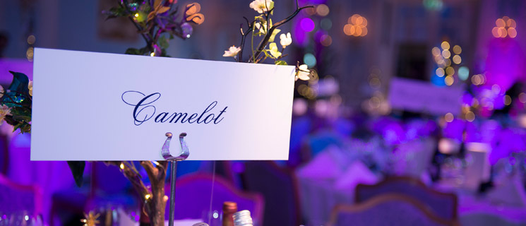 Enchanted Ball 2014