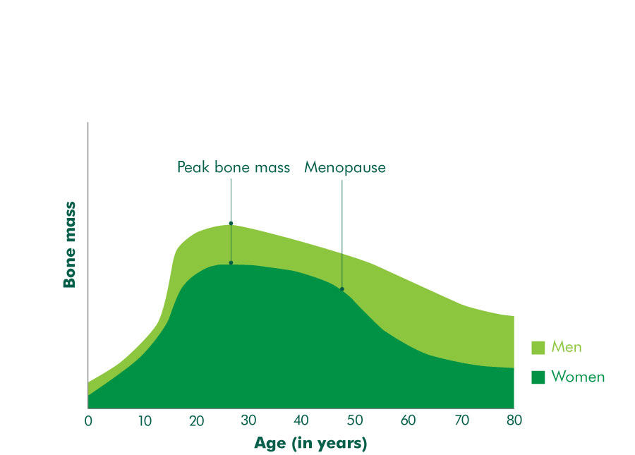Bone mass at different ages