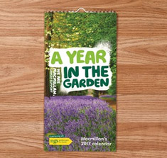 A wall calendar lying on a wooden table. The calendar has lavendar on the cover and the words 'A year in the garden'.
