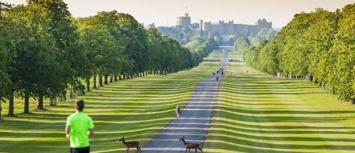 Royal Windsor Triathlon 2021