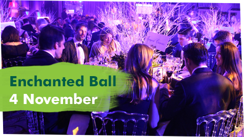 Enchanted Ball