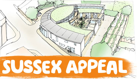 Sussex Appeal